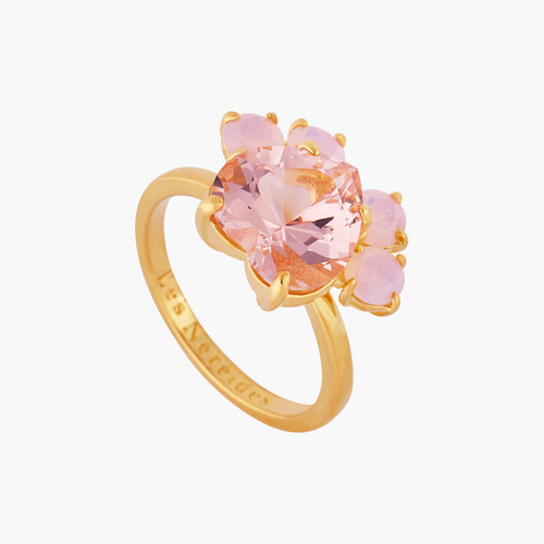 Kitty Paw Cocktail Rings | AMLA602/11