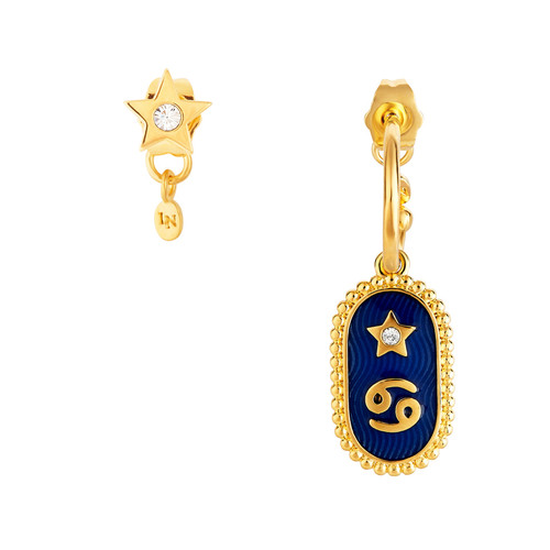 Cancer Zodiac Sign Earrings   ANCS1041