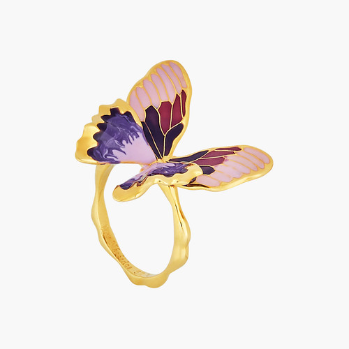 TERINOS BUTTERFLY MULTIPLE SIZE RING | ANHA6041