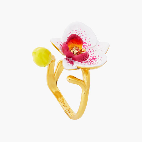 Rêves D'Orchidées Rings | AOOC6031
