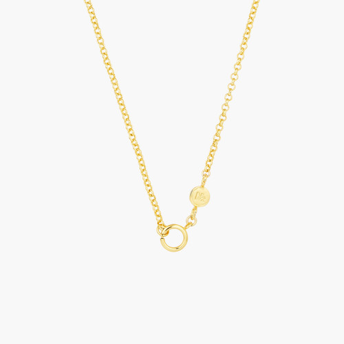Charm necklace chain   AOCH3011