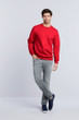 Men's Crewneck Sweatshirt (Red)