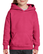 Youth Pullover Hooded Sweatshirt (Heliconia)