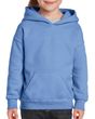 Youth Pullover Hooded Sweatshirt (Carolina Blue)
