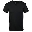 Men's Platinum V-Neck T-Shirt (Black)