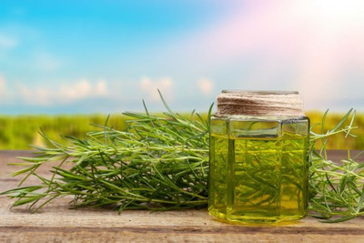 How to Choose the CBD Product Best for You