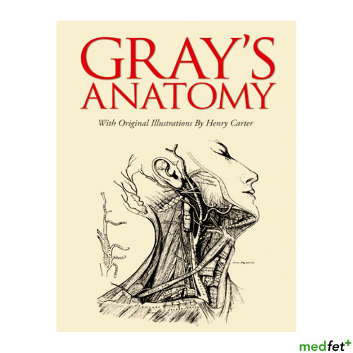 Gray's Anatomy - Gift Edition