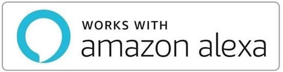 Foscam FI9961EP works with Amazon Alexa