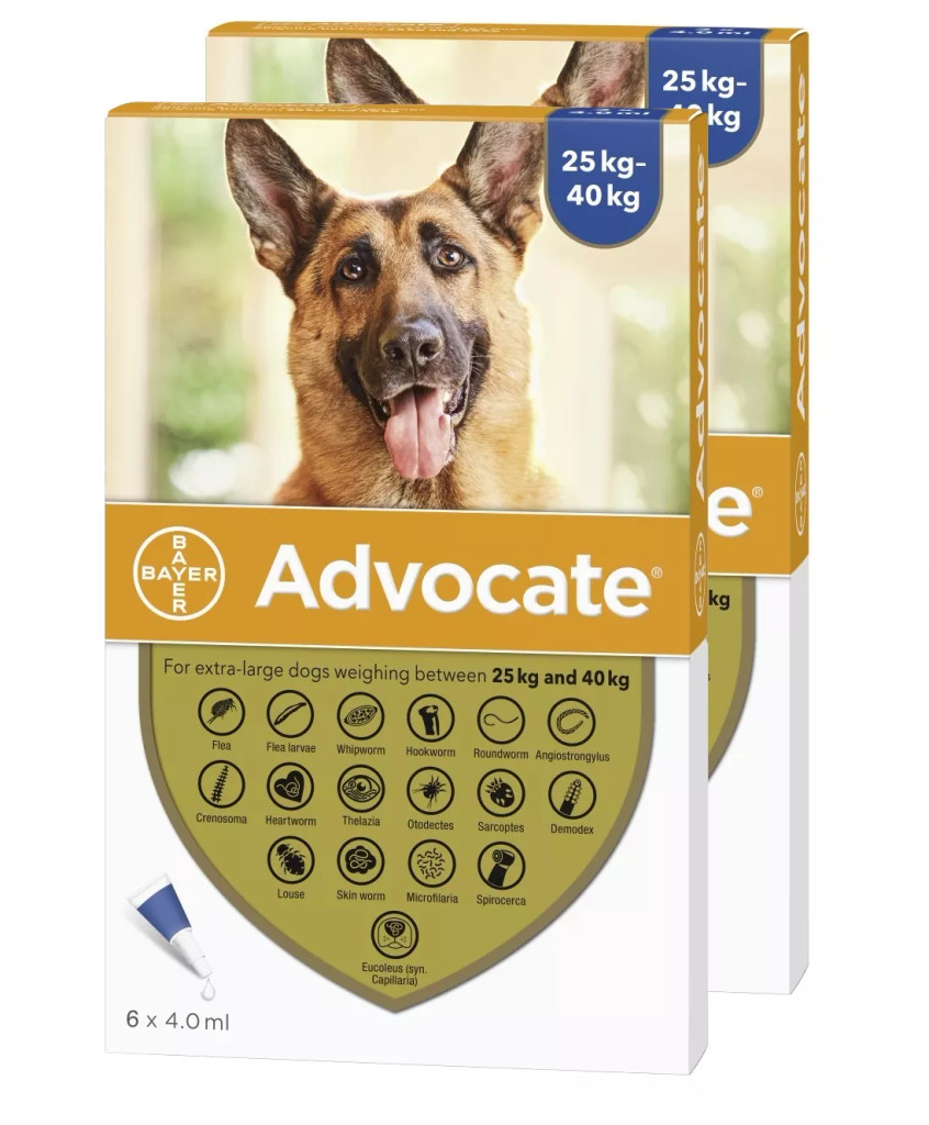 Advocate for Dogs over 55 lbs (over 25 kg) - Blue 12 Doses Front Packaging