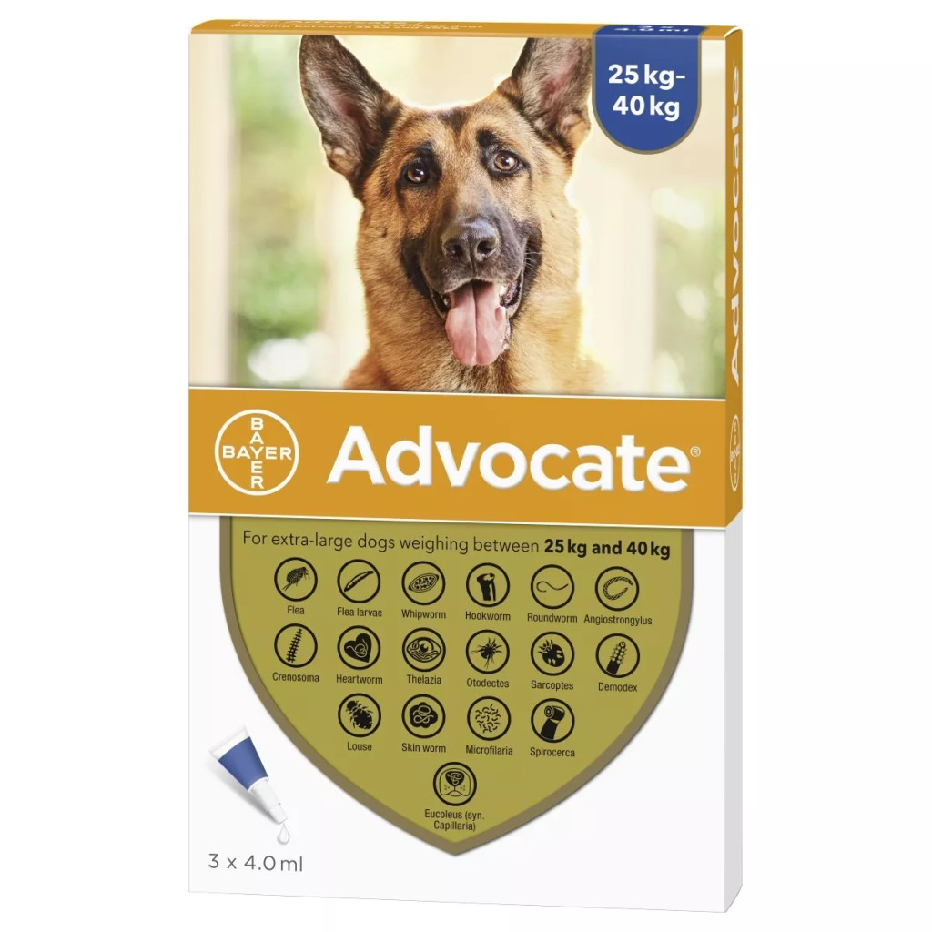 Advocate for Dogs over 55 lbs (over 25 kg) - Blue 3 Doses Front Packaging