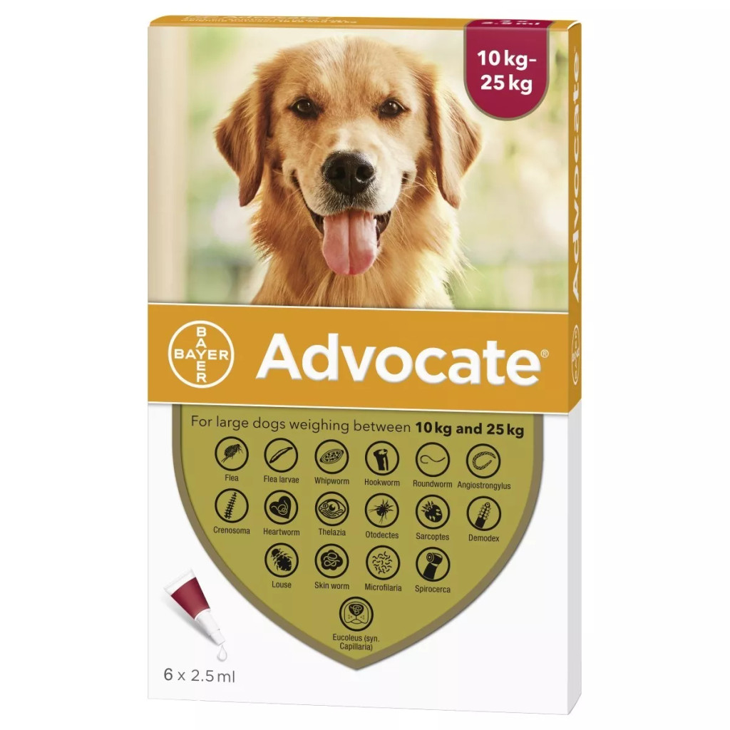 Advocate for Dogs 20-55 lbs (10.1-25 kg) - Red 6 Doses Front Packaging
