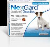Nexgard Chews for Dogs 10.1-24 lbs (4.1-10 kg) - Blue 6 Chews