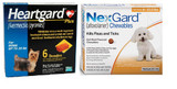 NexGard and Heartgard Combo for Dogs 4-10 lbs (up to 4 kg) -  6 Month Bundle