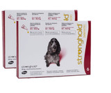 Stronghold for Dogs 20.1-40 lbs (10.1-20 kg) - Red 12 Doses