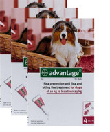 Advantage for Dogs 21-55 lbs (10.1-25 kg) - Red 12 Doses