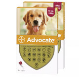 Advocate for Dogs 20-55 lbs (10.1-25 kg) - Red 12 Doses Front Packaging