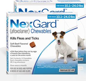 Nexgard For Dogs 101 24 Lbs 12 Pack Discount Pet Medication Usa