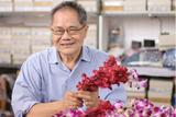 Danai Creates Breathtaking Jewelry From Natural Flowers