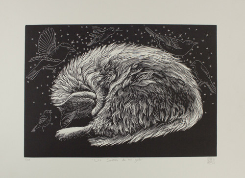 Black and White Bird Etching 'My Cat's Dreams'