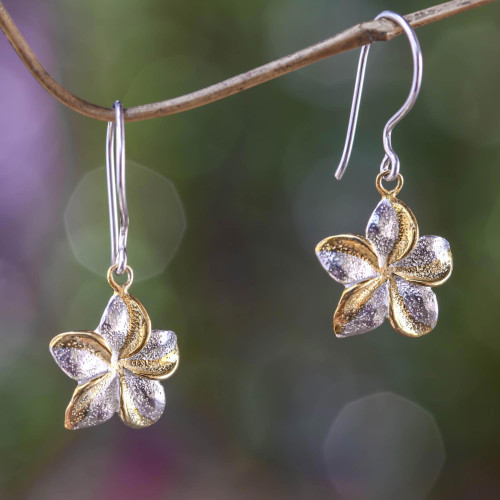Sterling Silver Earrings with Gold Accent 'Golden Frangipani'