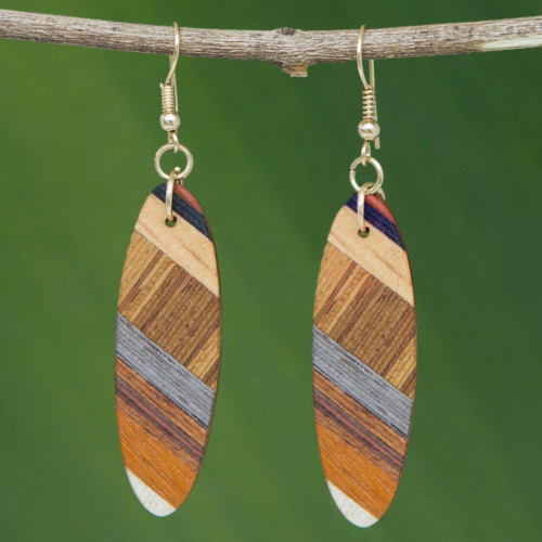 Brown Wood Oval Shaped Dangle Earrings from Brazil 'Forest Excitement'