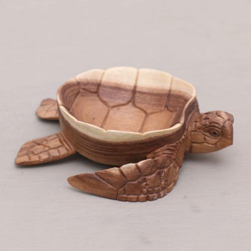 Suar Wood Tortoise Catchall Hand Carved in Bali 'Kura Kura Keeper'