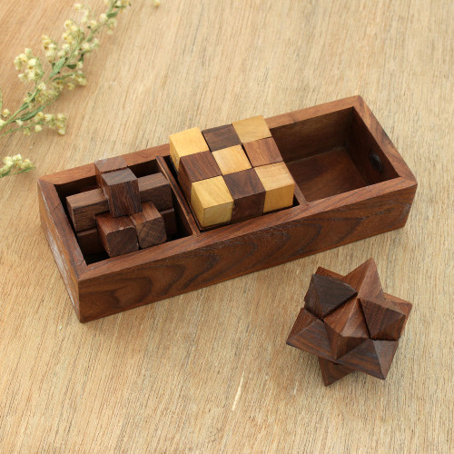 Handcrafted Wood Puzzles Set of 3 from India 'Challenging Trio'
