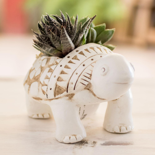 Handcrafted Ceramic Turtle Flower Pot from El Salvador 'Cheerful Little Turtle'