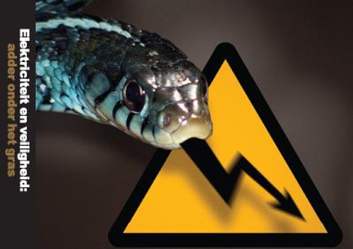 Electrical Safety: Beware The Bite!