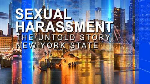 Sexual Harassment: The Untold Story (New York State Version)
