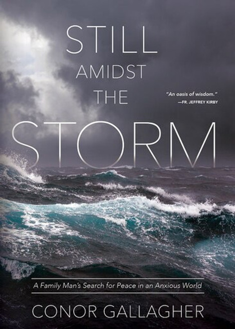 Still Amidst the Storm: A Family Man's Search for Peace in an Anxious World (eBook)