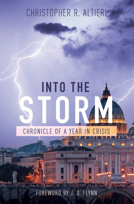 Into the Storm: Chronicle of a Year in Crisis (eBook)