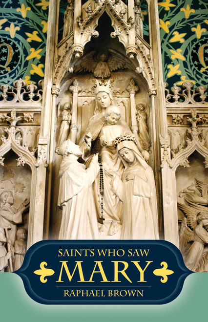 Saints Who Saw Mary (eBook)