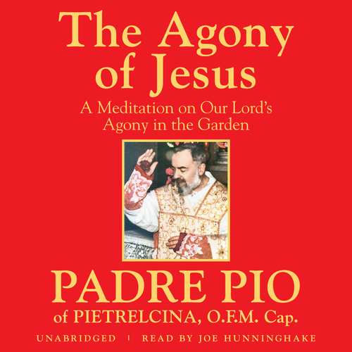 The Agony of Jesus (MP3 Audiobook Download)