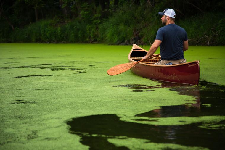 The Pathfinder Ottertail Canoe Paddle