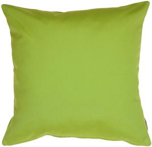 Sunbrella Macaw Green 20x20 Outdoor Pillow