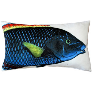 Blue Wrasse Fish Pillow 12x19