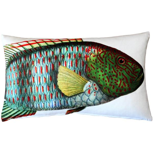 Maori Wrasse Fish Pillow 12x19