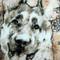 German Shepherd Dog Pillow 17x17