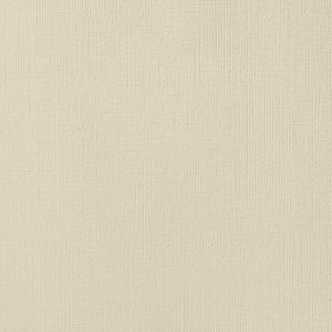 Straw Textured Cardstock   American Crafts