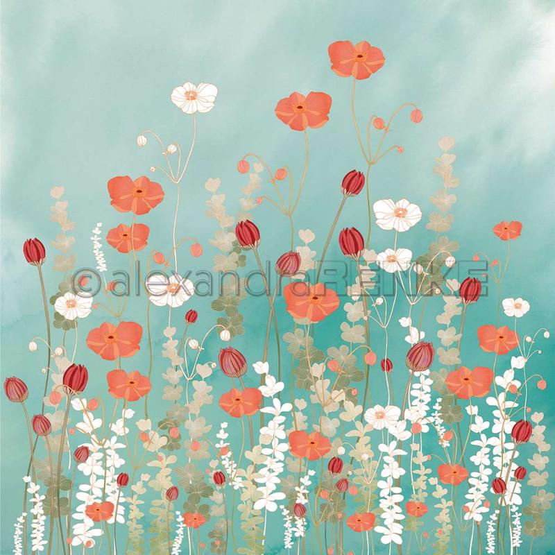 Poppy Flower Meadow | Memories | Alexandra Renke