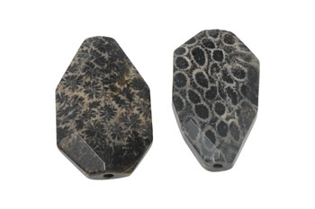 Fossil Coral Agate Polished 42-24mm Faceted Oval