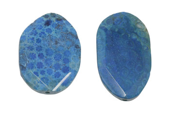 Fossil Coral Agate Polished 54-56x40mm Faceted Oval