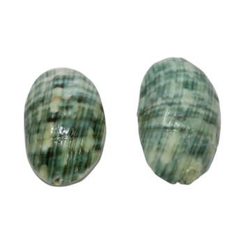 Green Shell 27-30x19mm