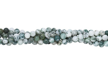 Tree Agate Polished 6mm Round