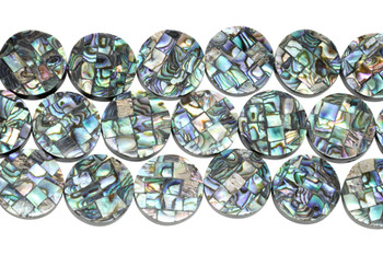 Abalone 20mm Coin