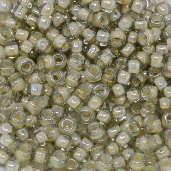 Size 6 Toho Seed Beads -- 329 Black Diamond / Beige Lined