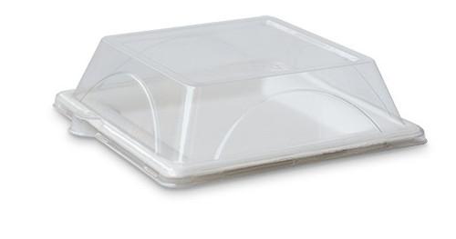 "Plate (Sugarcane) - Square 8"" (200mm) - [FP08] - Biodegradable"