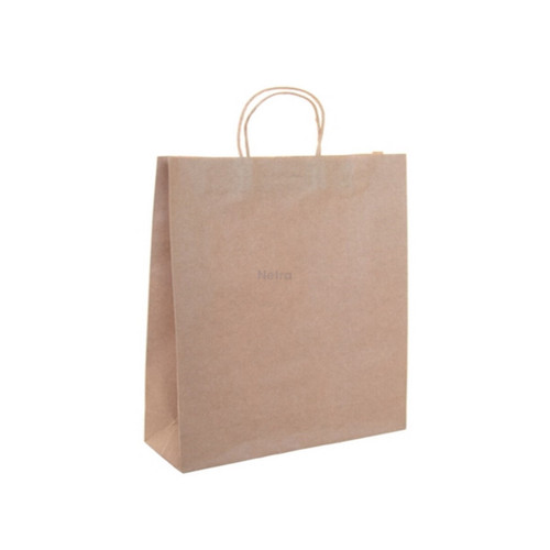 Carry Bag - Brown Kraft Plain with BROWN Twist Handle - SMALL