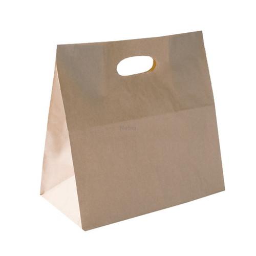 Carry Bag - Brown Kraft Plain with D CUT Handle